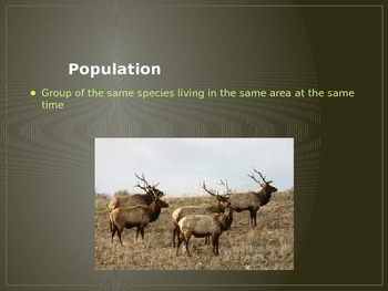 Ecology Powerpoint