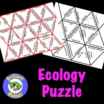 Ecology Puzzle Review