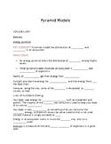 Ecology - Pyramid model notes