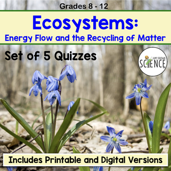 Ecosystems Quiz Set