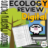 Ecology Review Digital Hidden Mystery Picture