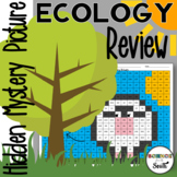 Ecology Review Hidden Mystery Picture