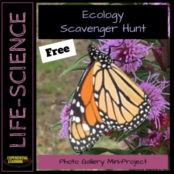 Ecology Scavenger Hunt: Photo Gallery Mini-Project