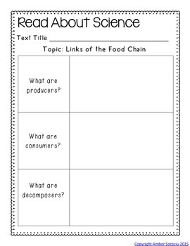 Ecology Science Station Activities