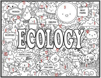 Ecology Seek and Find Science Doodle Page