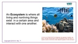 Ecology ESL /Distant Learning'/ Visual Study Guides