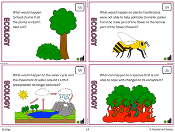 Ecology Task Cards (Differentiated and Tiered)