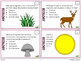 Ecology Task Cards