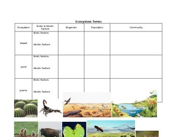 Ecology Terms Notebook Activities