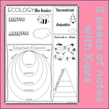 Ecology: The Basics Doodle-it! Notes