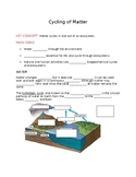 Ecology - The Cycling of matter notes