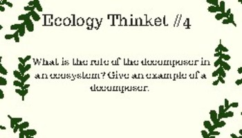 Ecology Thinkets/Question Stations/Task Cards