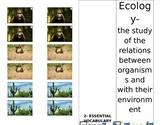 Ecology Unit Booklet
