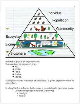 Ecology Unit Notes, Animal Interactions, Food Webs, Standards and Curriculum