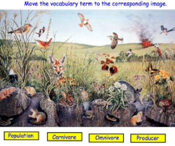 Ecology Unit Review Materials - Review Game, Mid-Unit Presentation, Assign.