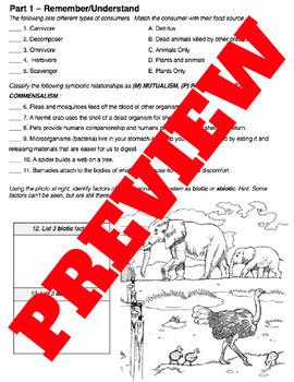 Ecology Unit Test