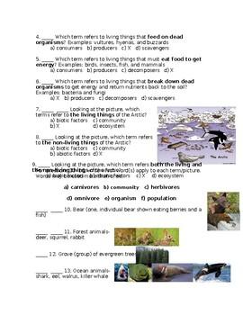 Ecology Vocabulary Quiz