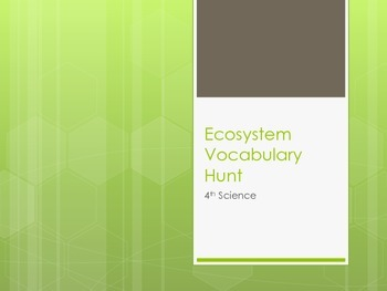 Ecology Vocabulary Scavenger Hunt Activity