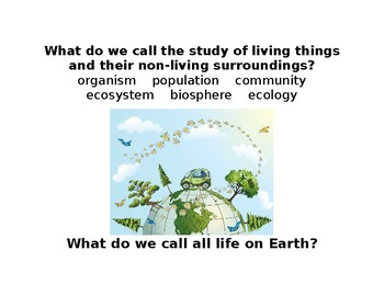Ecology Vocabulary Stations