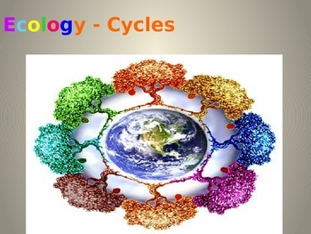 Ecology: Water, Carbon and Nitrogen Cycles