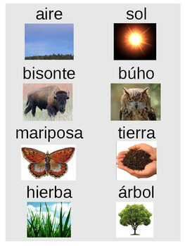Ecology Word Sort (Spanish/English)