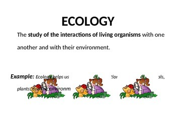 Ecology Word Wall Preview