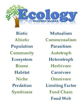 Ecology Word Wall Poster