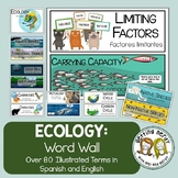 Ecology - Word Wall