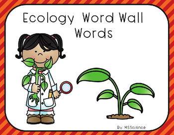 Ecology Word Wall Words