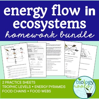 Ecology- Energy Flow in Ecosystems