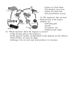 Ecology and Ecosystem Exam
