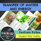 Energy Transfer in Ecosystems: Unit Notes