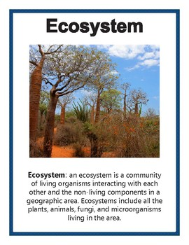 Ecology and Environmental Posters