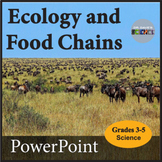 Ecology and Food Chains PowerPoint NGSS 5-PS3-1 and NGSS 5-LS2-1
