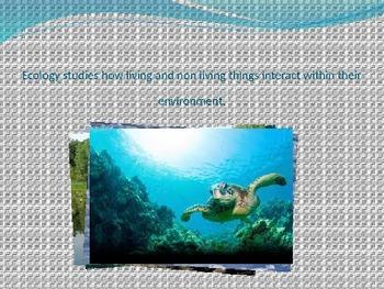 Ecology- living vs. non-living