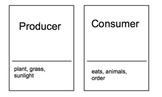 Ecology taboo cards