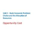 Economics – Basic Economic Problems – Opportunity Cost
