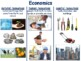 Economics Lesson and Flashcards- lesson, study guide, exam prep, 2017 2018