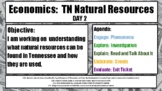 Economics:  Natural Resources of Tennessee