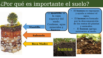 Ecosistemas (Ecosystems Spanish)