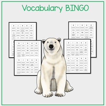 Ecosystem Games:  Vocabulary, BINGO, and I Have, Who Has