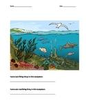 Ecosystem Assessment