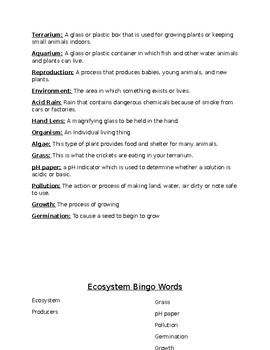 Ecosystem Bingo
