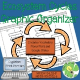 Ecosystem (Biogeochemical) Cycles Graphic Organizer
