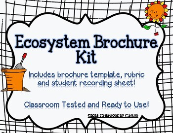 ecosystem brochure kit