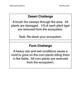 Ecosystem Challenge -  Energy pyramids
