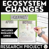 Digital Ecosystem Changes Project
