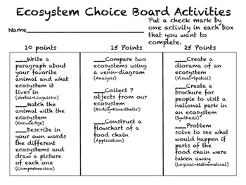 Ecosystem Choice Board