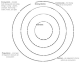 Ecosystem Circle Map