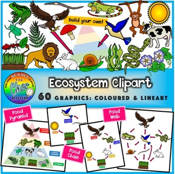 ecosystem clipart energy pyramid food chain food web by the cher rh teacherspayteachers com ecosystem clipart black and white ecosystem clipart free